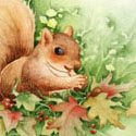 Happy Squirrel, 2012   Watercolor